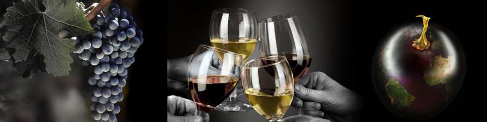 Salons for Salon vin grenoble